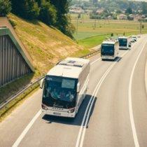 autobusy1.jpg